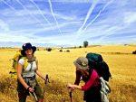 Wielkie Wyprawy: Camino de Santiago – nie tylko droga